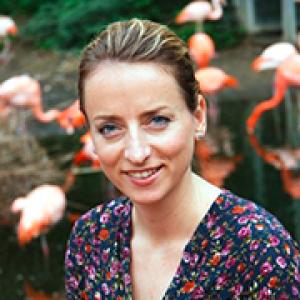 OsnaBRÜCKE - Lisa Josef